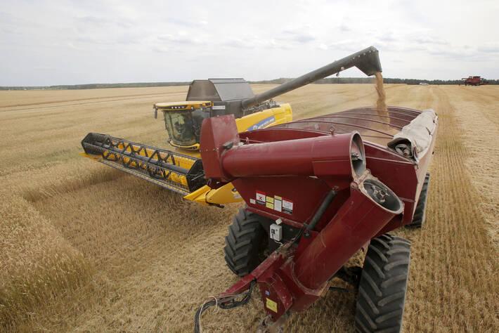 Raccolta di grano in Ucrain - foto FAO
