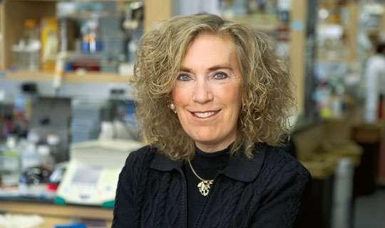La prof. Elaine Fuchs (foto: media.hhmi.org)